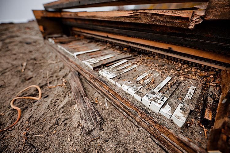 Piano Times Publishing Group Inc tpgonlinedaily.com